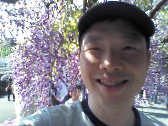 藤の花を見てきました