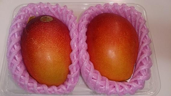 宮崎産の完熟マンゴーをいただきました。